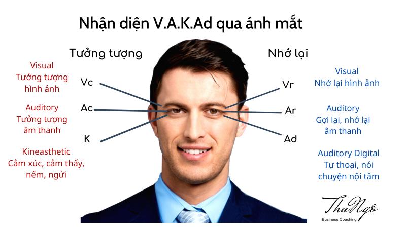 V.A.K.Ad là gì? và ứng dụng như thế nào? Mẫu test nhanh